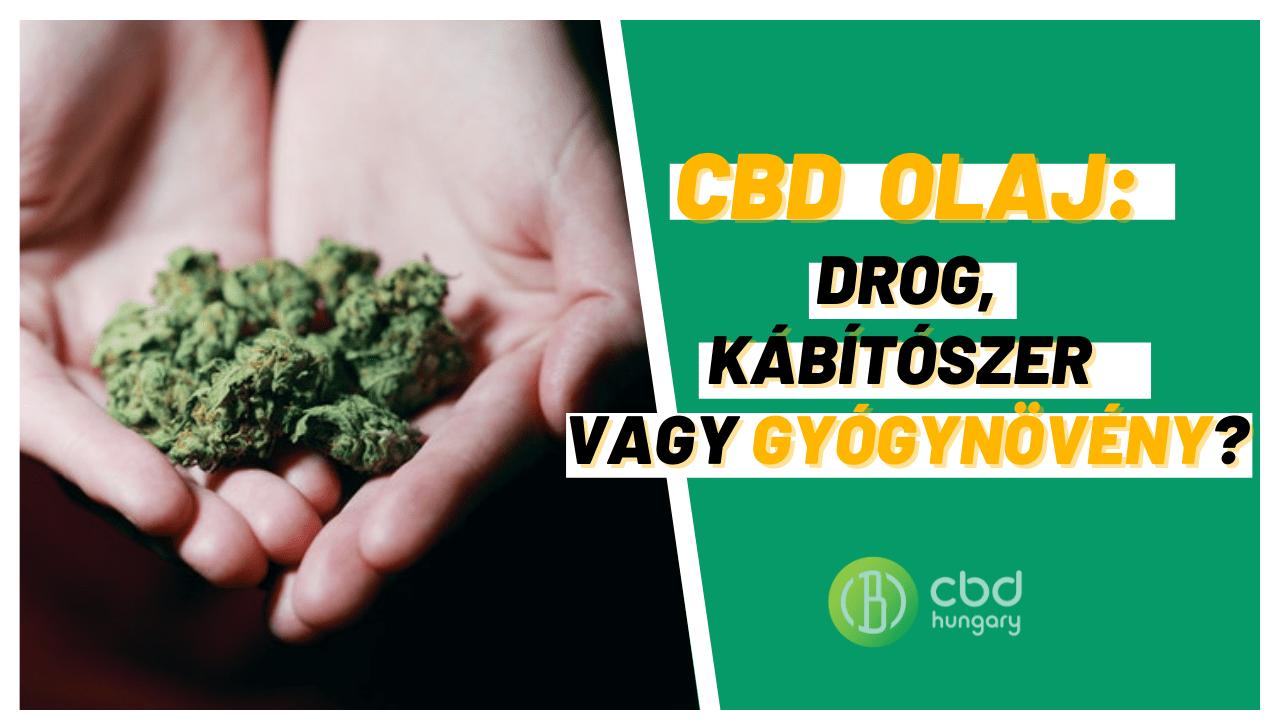 CBD olaj drog vagy gyógynövény