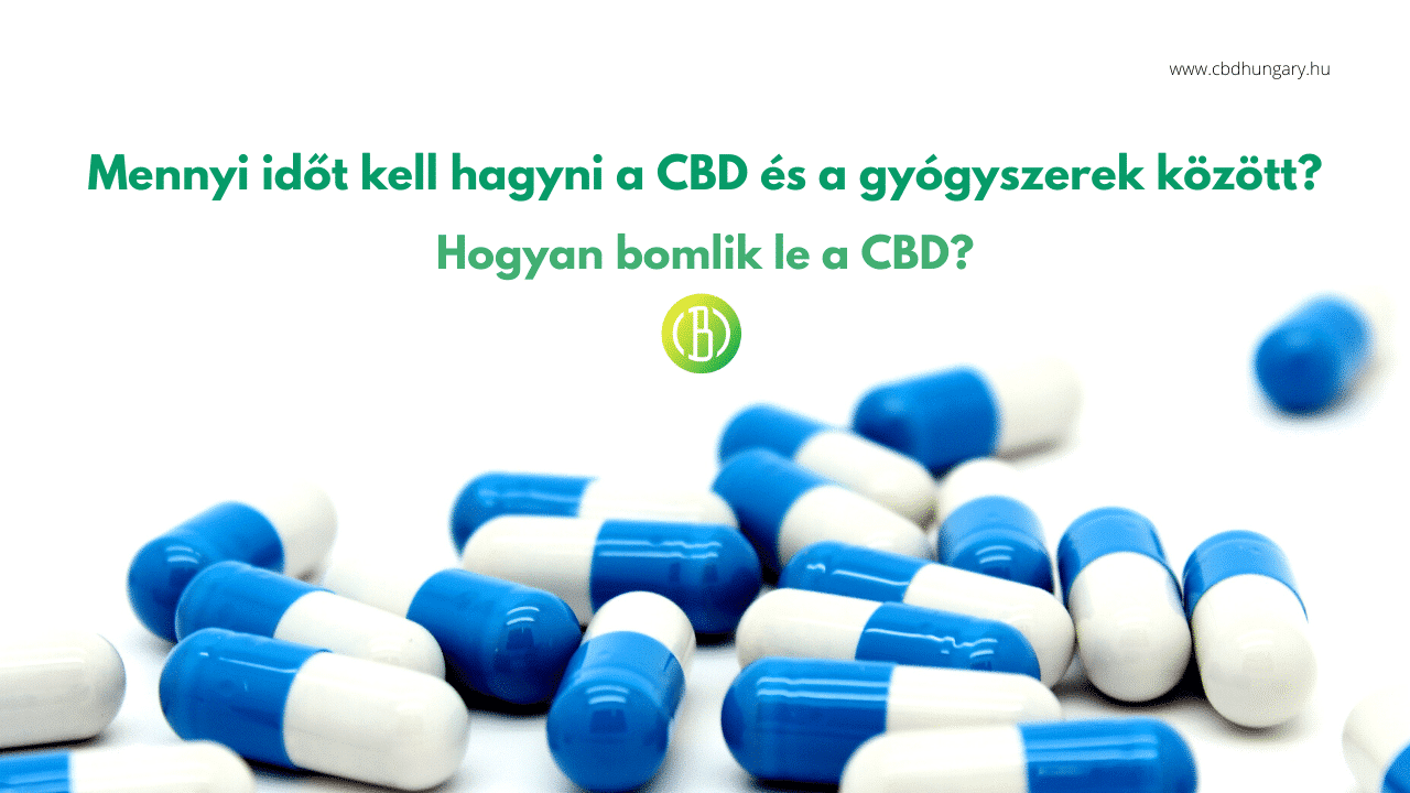 A CBD lebomlása + Mennyi időt kell hagyni a CBD és a gyógyszerek között?